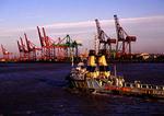 Tianjin harbor
