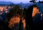 Zhangjiajie National Forest Park in the Wulingyuan scenic area