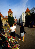 Tallinn's Viru Gate (to Old Town) flower seller