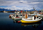 Iceland's Husavik Harbor