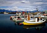 Iceland's Husavik Harbor