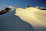 Sand dunes along the Indian Ocean coast at Arniston in South Africa's Western Cape