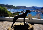 Statue of Just Nuisance overlooking Simon's Town harbor on Cape peninsula