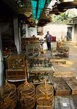 Guangzhou bird market