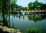 Hangzhou's West Lake, bridge across lotus pond on Island of Small Seas