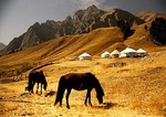 White Poplar Valley with Kazakh horse and yurts in Tian Shan Mountains north of Urumqi