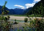Meadow at end of Lago Todos los Santos beneath peaks of Andes near Puerto Peulla in Lake District of Chile