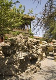 Imperial Palace Museum (Forbidden City) garden with Taihu stones and flowering trees