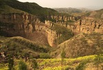 "Yellow ""Welcome Spring"" flowers on loess plateau above gorge with stream tributary of Yellow River (Huanghe) in Shanxi province"