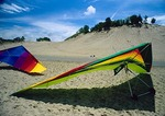 Hang gliders on Lake Michigan beach next to  Tower Dune at Warren Dunes State Park