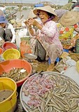 Woman selling seafood in market in Mekong River Delta near Can Tho