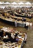 Tashkent market, Uzbekistan