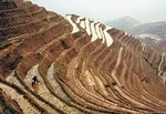 Terraced fields in spring rice planting season at Ping'an village in Longji (Dragon's Back) in Guangxi
