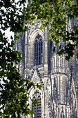 Facade of Cologne Cathedral through trees