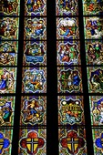 Cologne Cathedral stained glass window