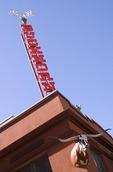 San Antonio's Buckhorn Saloon & Museum neon sign & longhorn