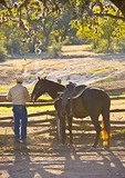 Texas Hill Country, Dixie Dude Ranch, cowboy returning to corral at days end