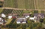 Rheingau region vineyards near Lorchhausen along Rhine River with house with solar panels on roof