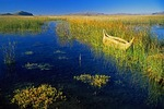 Lake Titicaca Bolivian shore with woven reed boat among the reeds