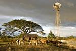 Nicaraguan tenant farm in rural Rivas department, west of Lake Nicaragua