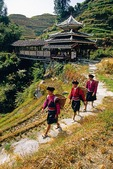 Red Yao nationality women pass Longsheng County wind &amp; rain bridge near Ping'an village and rice terraces of Longji