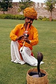 Rajasthan snake charmer with cobra at Khimsar Fort.