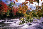 Autumn leaves at Bond Falls on Ontanagon River in Upper Peninsula