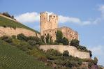 Ehrenfels Castle ruins and vineyards near Rudesheim