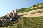 Ehrenfels Castle ruins and vineyards near Rudesheim