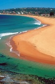 Sydney's Narrabeen Beach