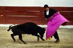 Young Puerto Vallarta matador in bullfighting exhibition