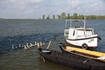 Danube River channel in the Danube Delta with boats and water fowl near Tulcea