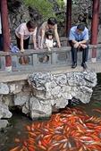 Girl feeding goldfish at Shanghai's Yu Yuan Garden