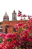 Bouganvillia overlooking San Miguel de Allende's Templo de la Concepcion (Immaculate Conception Church) bell tower and dome