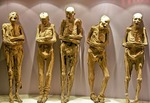 Guanajuato's Museo de las Momias with mummified bodies in glass display cases