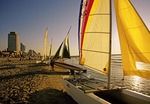 Tel Aviv sailboats on the beach in late golden light