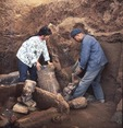 Excavation of first Terra Cotta army figures at Xian