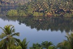Backwaters of North Kerala with boats on palm-lined Chaliyar River at Kadavu Resort near Calicut