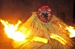 Theyyam performer surrounded by flaming torches dances a variation of the fire ritual performed at festivals in North Kerala.
