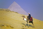 Egyptian man riding decorated camel at Great Pyramids at Giza