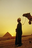 Great Pyramids at Giza at sunset