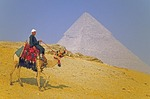 Egyptian man riding decorated camel at Great Pyramid at Giza
