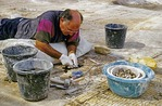 Archaeologist working on mosaic tile floor at Beit She'an ancient site in Jordan Valley