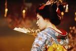 Dancer of Cherry Blossom Dance (Miyako Odori) at Gion Corner in Kyoto