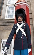 Danish royal guard at Amalienborg Palace in Copenhagen.
