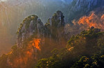 China's Huangshan (Yellow Mountain) viewed from Lion Peak at sunrise with North Sea (Beihai) mists illuminated by sunlight.