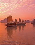 Tourist junks at sunset on Halong Bay, Vietnam
