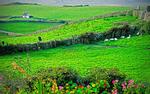 County Clare countryside near Liscannor, Ireland.
