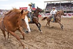Bronc from Bareback competition tries to elude riders.