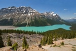 Peyto Lake in Banff National Park, Alberta